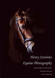 My New Equine Portraits Brochure