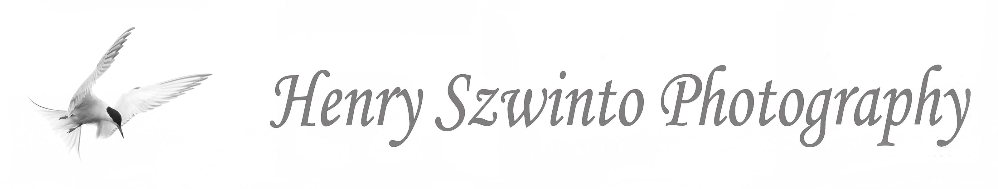 Henry Szwinto Wedding Photography